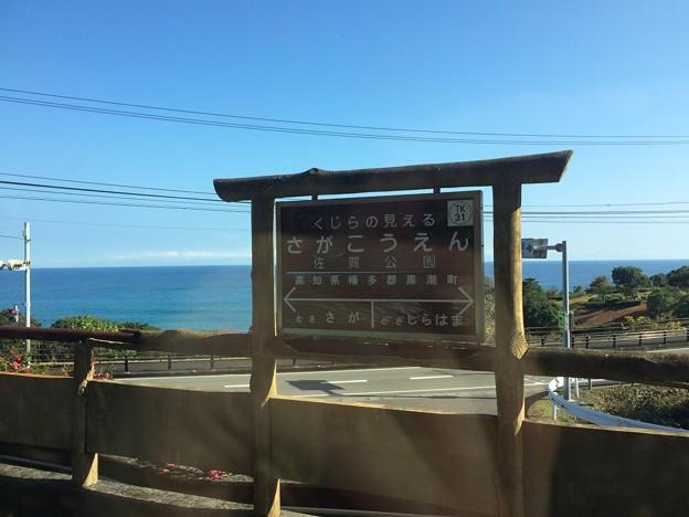 Photos: 佐賀公園駅2