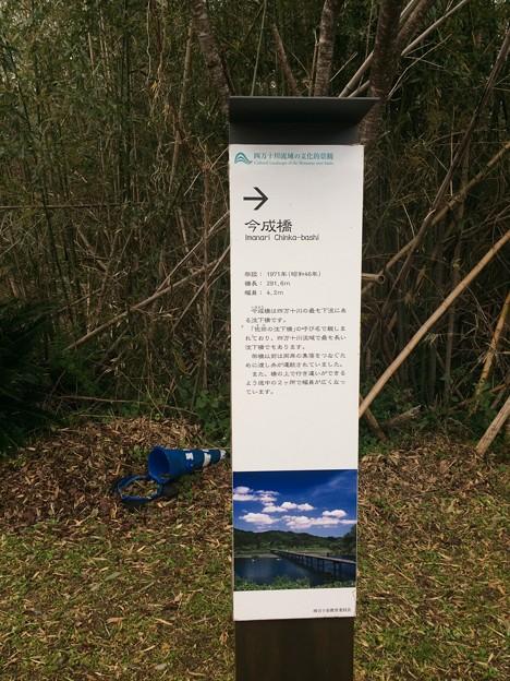 佐田沈下橋3