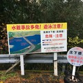 Photos: 高瀬沈下橋1