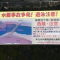 Photos: 勝間沈下橋4
