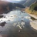 Photos: 予土線沿線風景2