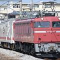 EF81 81+マヤ50 5001+EF64 1001