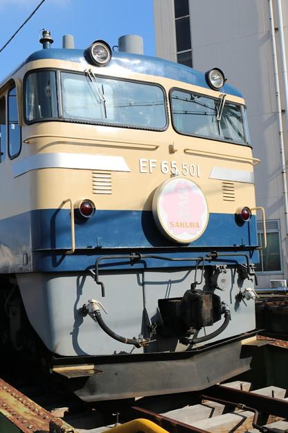 EF65 501(さくらHM)