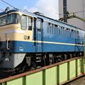 Photos: EF65 501(さくらHM)