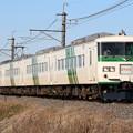 185系200番台 B5編成 快速早春成田初詣号