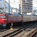 Photos: EF81 140+武蔵野線205系5000番台 M33編成 配給回送(ジャカルタ行)