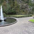 Photos: 成田山公園