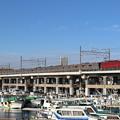 Photos: EF81 134+武蔵野線205系5000番台 M21編成 配給回送(ジャカルタ行)