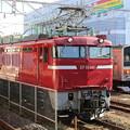 EF81 141・武蔵野線205系5000番台 M31編成(ジャカルタ行)