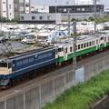 Photos: EF65 2101+キハ40 2026+2021(小湊鉄道譲渡) 甲種輸送