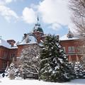写真: 赤れんが庁舎