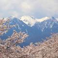 写真: 南駒ヶ岳