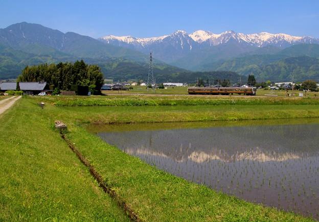 初夏の飯田線