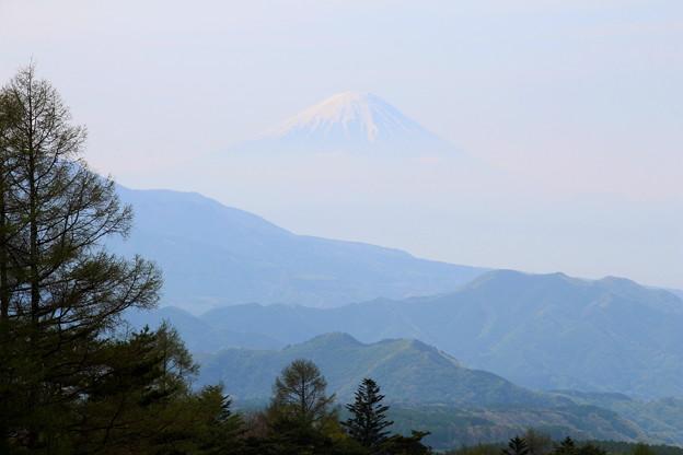 彼方に浮かぶ富士山