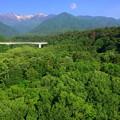 写真: 中田切渓谷
