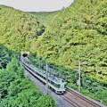 Photos: 木曽路をゆくあずさ号