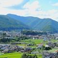 写真: 夏の飯田線