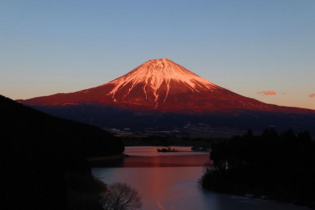 田貫湖の紅富士
