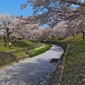 写真: 花弁の川 壱