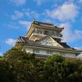 写真: 岐阜城