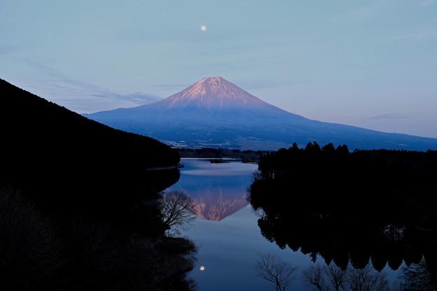 Photos: 逆さ富士、逆さ月