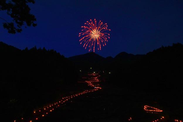 Photos: 四谷の千枚田【夜】その1