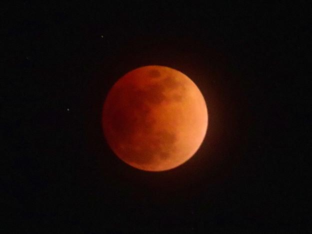 Photos: 赤い月