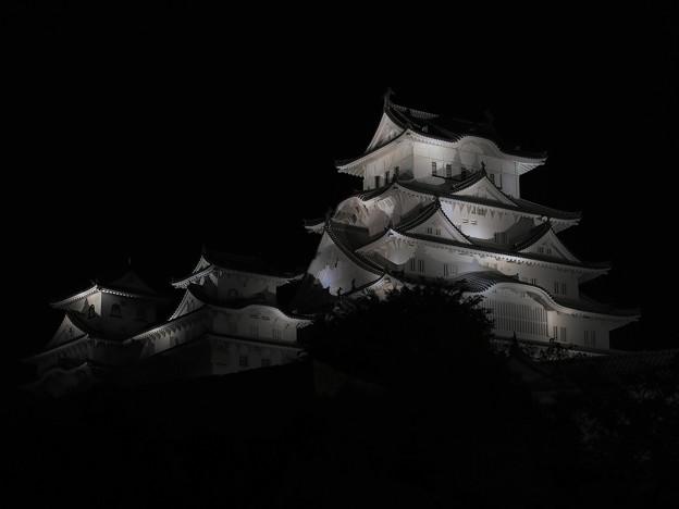 夜の白鷺城