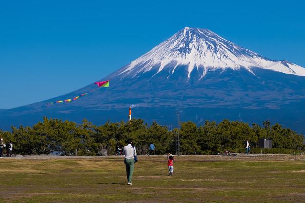 富士山の見える公園