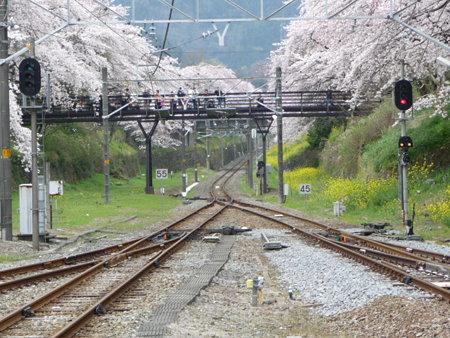 090405-山北駅ホームから (4)