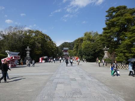 170413-鶴岡八幡宮 (5)