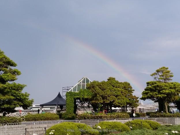 写真: 170518-虹(赤レンガ) (14)