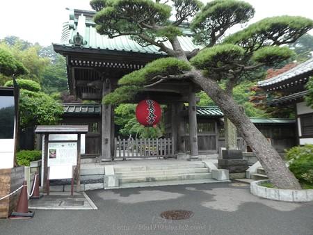 170628-鎌倉 長谷観音 (1)