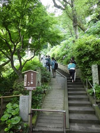 170628-鎌倉 長谷観音 (13)