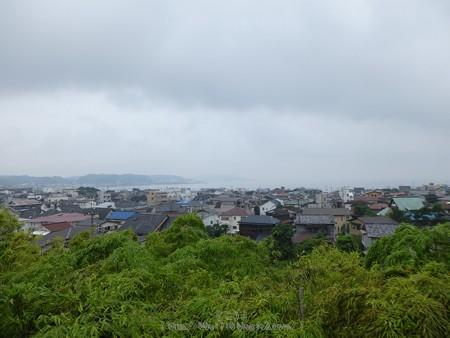 170628-鎌倉 長谷観音 (182)