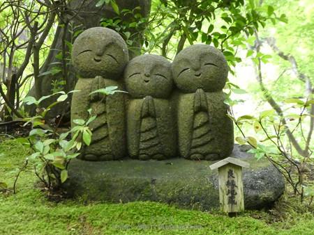 170628-鎌倉 長谷観音 (199)