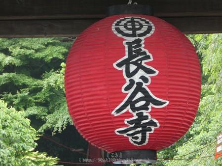 170628-鎌倉 長谷観音 (213)