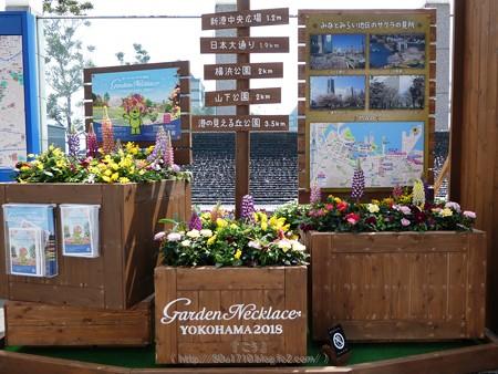 180327-ガーデンベアモニュメント@みなとみらい (4)