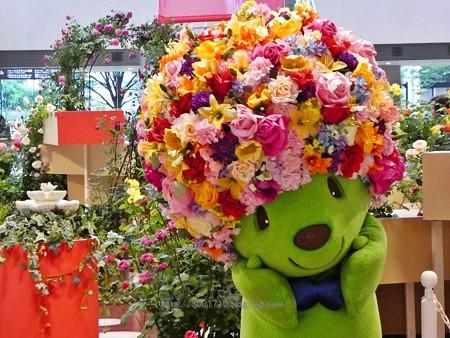 180508-ガーデンベア@趣味の園芸in横浜 (206)
