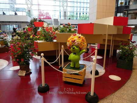 180508-趣味の園芸in横浜 会場 (3)