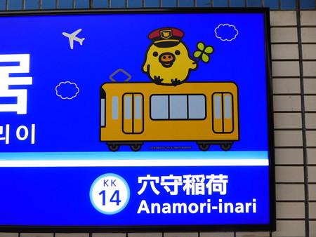 おおキイロイトリい駅 ホーム (5)