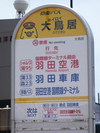 おおキイロイトリい駅バス停 (2)