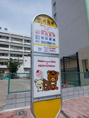 おおキイロイトリい駅バス停 (4)