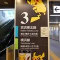 180716-ピカチュウ大量発生チュウ@桜木町駅 コンコース 3 (2)