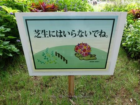 180924-里山ガーデン 大花壇 (2)