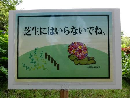 180924-里山ガーデン 大花壇 (3)