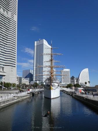 171112-日本丸 総帆展帆 (3)