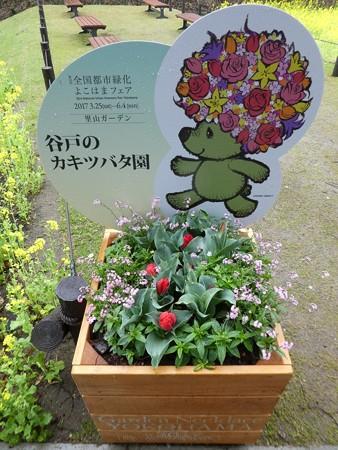 170409-里山ガーデン (57)