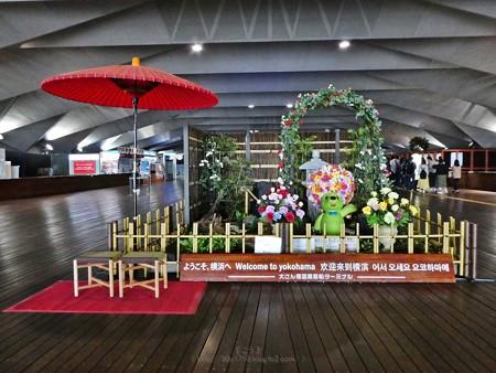 190503-ガーデンベアフォトスポット@大桟橋 (4)
