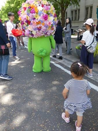 190519-ガーデンベア@日本大通り(1回目) (4)